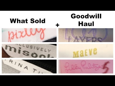 WHAT SOLD ON EBAY + GOODWILL HAUL