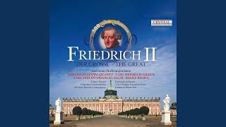 Dresdner Barocksolisten & Eckart Haupt — Flute Concerto in D Minor, QV 5:81: II. Arioso