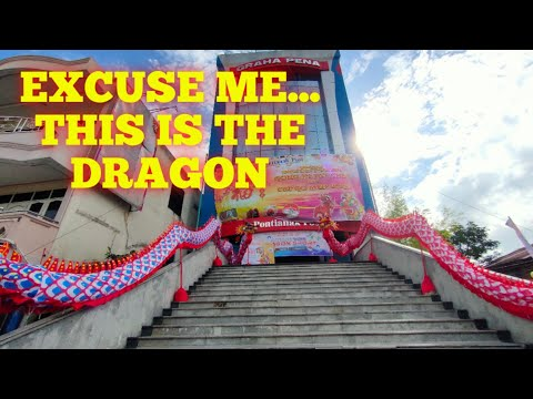 excuse-me...-this-is-the-dragon