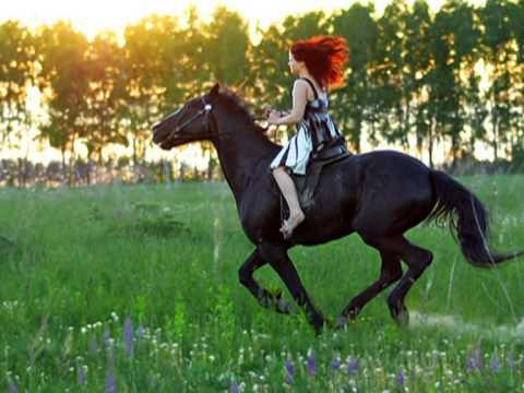 Видео осекси с конем