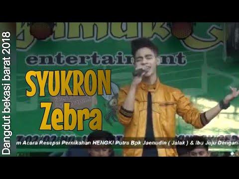 Syukron Zebra - Cinta Dalam Pesta