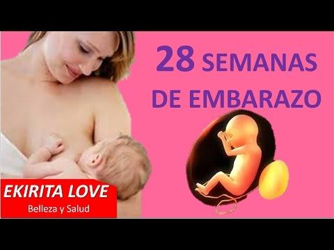 28 semanas de embarazo ultrasonido 3D