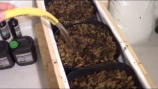 Building A Legal Medical Marijuana Grow Room Part 03 - Http://www.limbo-co.com