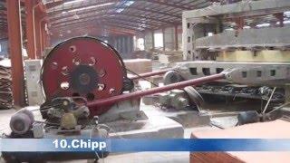 Engineered Veneer  Production Processes
