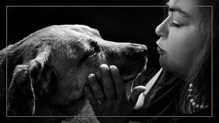 FUREVER USA : Adopt Video