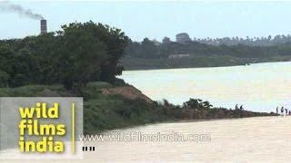 Mahanadi River in Cuttack, India
