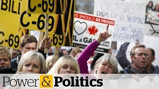 Government accepts dozens of changes to environmental review bill C-69 | Power & Politics