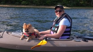 Nj Kayaking - Sharon In Her New Kayak With Buttercup Her Pomeranian