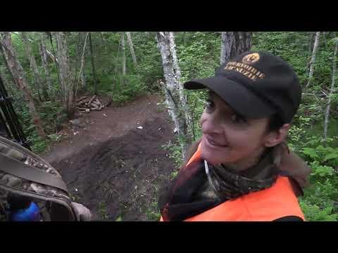Chasse à l'ours à l'arc à la Pourvoirie du lac Suzie