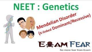 NEET Biology Genetics :  Thalassemia