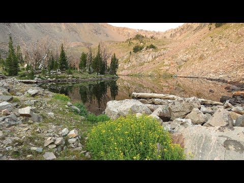 Backpacking greater Yellowstone - Taylor/Hilgard mountains
