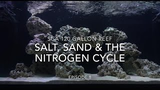 SCA 120 Gallon Reef Tank | Ep.8 | Salt, Sand & The Nitrogen Cycle ALMOST done..