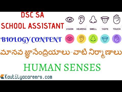 DSC SCHOOL ASSISTANT BIOLOGY CONTENT