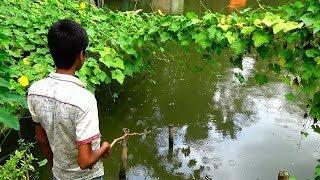 Live Fishing Video | मछली पकड़ने का वीडियो (Part-80)
