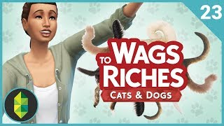 Wags to Riches - Part 23 (Sims 4 Cats & Dogs)