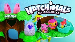 Hatchimals • Wylęgarnia jajeczek w magicznym drzewku • Spin Master • Openbox