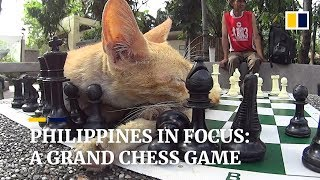 Checkmate Manila: pawns, paws and a grand chess game in the Philippine capital