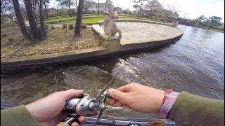 Urban Bass Fishing In a $1,000,000 Neighborhood