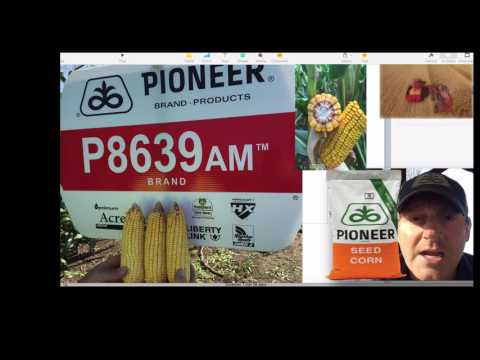 Pioneer® GrowingPoint® - 2016 Product Performance