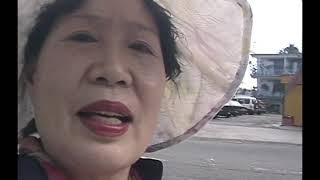 팔라우 2007년 어머니 여행 전편
