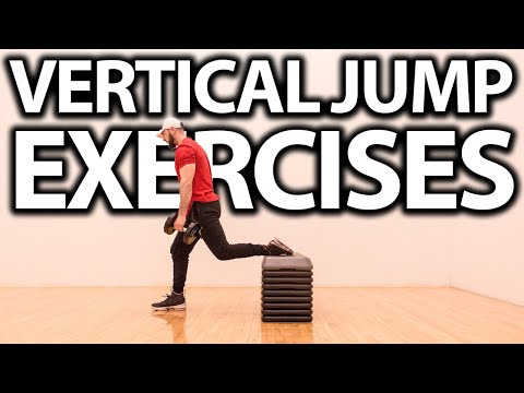 THE 5 BEST EXERCISES FOR VERTICAL JUMP! (WITH WEIGHTS)