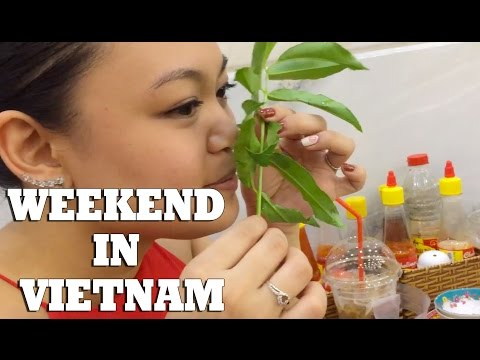 Weekend Trip to Vietnam!  Vietnamese New Year pt.1