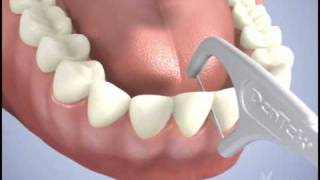 Macromolecul carea floss benang tusuk gigi pembersih sela gigi isi 50
