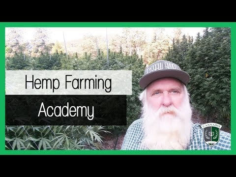 Learn how to grow hemp - An online course for new #Hemp Farmers