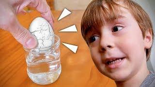 OVO DE DINOSSAURO QUE NASCE NA AGUA!! Brinquedos Legais para Crianças - Ovo Surpresa thumbnail