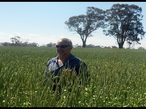 Bob Mackley Soil Conservation
