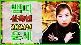 2021 신축년 뱀띠 운세/나이별운세/기회/건강/바쁘다/상문/대성주/이동/기회