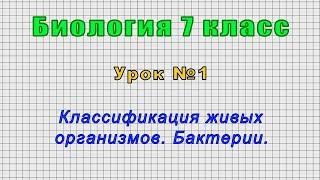 Биология 7 класс (Урок№1 - Классификация живых организмов. Бактерии.)