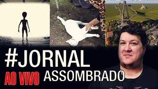 J.A.#142: Gato Branco em Funeral - Caso João Caiana! Gigantesco Monumento em Aparecida-SP
