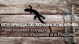 андрей Ваджра. Вся правда об украинской армии: обзор стрелковых «вундервафель» ВСУ ( 33)