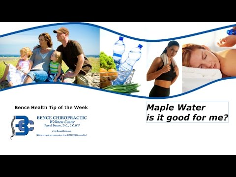 Chiropractor Sterling Heights MI Maple Water--Is it Good for Me?