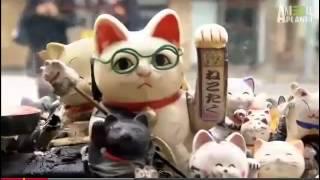 Манэки-нэко.«Кот счастья» или «Зовущая кошка» - игрушка Flip Flap (Флип Флап)