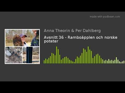 Avsnitt 36 - Ramboäpplen och norske poteter