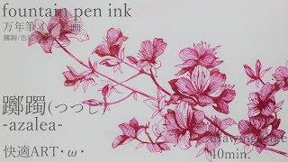 つつじ描いてみた・ω・_万年筆画(躑躅)_FABER-CASTELL【how to draw】 thumbnail