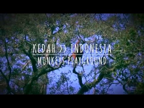 Travel movie Kedah Sumatra - Indonesia || ourtraveldreams.com