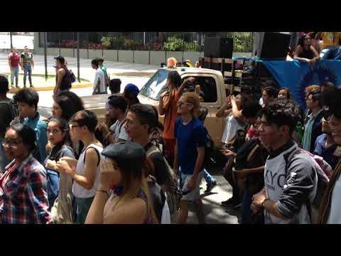 Marcha 19 De Orgullo Gay Caracas 2019 - Venezuela