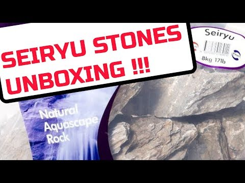 Pisces Seiryu Stone Unboxing and Prep