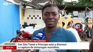FORMAÇÃO PARA AS PALAIÊS 2019 (Notícia RTP)
