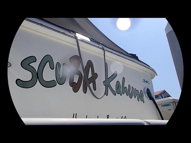 Scuba Kahuna 09/11/19