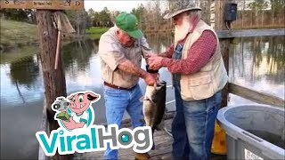 Funny Video: Record Bass Caught By Hand