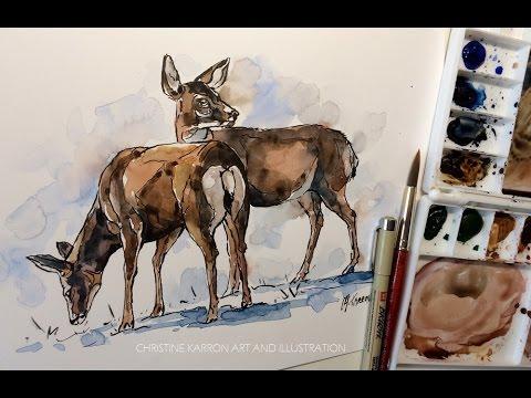 Ink Pen Line and Watercolor Sketch Mule Deer drawing demo by Ch.Karron