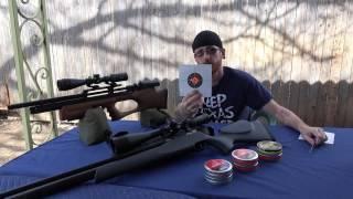 KRAL ARMS PUNCHER BREAKER 22 ACCURACY TEST VS FX STREAMLINE