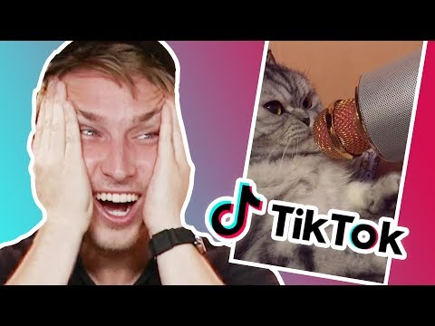 WE REACT TO TIK TOKS!