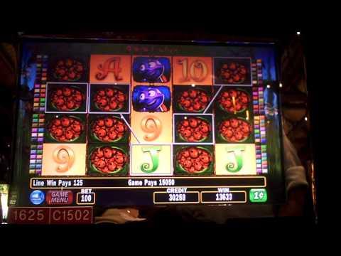 Slot win on 100 Ladies at Sands Casino at Bethlehem, PA.
