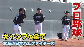 映像提供:GAORA https://www.gaora.co.jp/fighters/2761870 クーニンズ...
