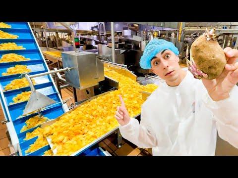 Así se Hacen las Patatas Fritas 🍟😋   Tour Fabrica Paso por Paso!
